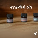 Annmarie Gianni essential oils review